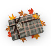 Autumn gift packaging